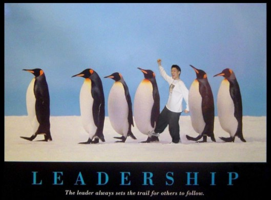 Leaders blaze a trail for others to follow